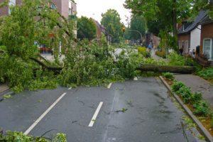 Taloyhtiö voi varautua myrskytuhoihin vakuutuksilla. Niihin on kuitenkin tärkeää perehtyä huolella, sillä aina vakuutus ei kata myrskyvahinkoja.